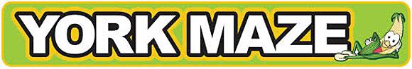 maze-banner